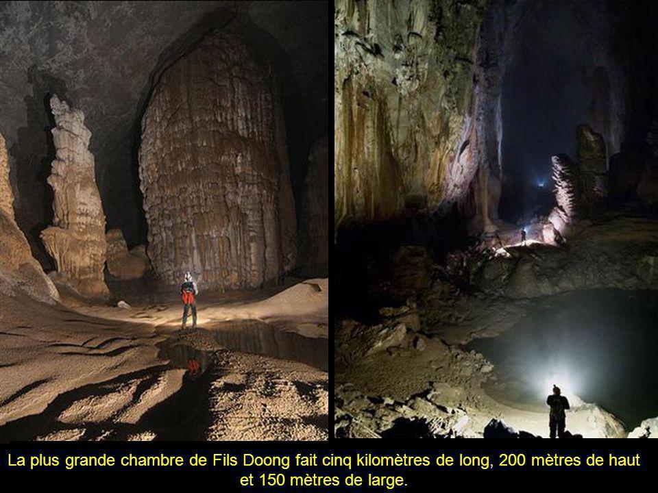 La plus grande chambre de Fils Doong fait cinq kilomètres de long, 200 mètres de haut et 150 mètres de large.