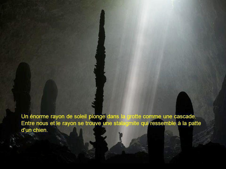 Un énorme rayon de soleil plonge dans la grotte comme une cascade