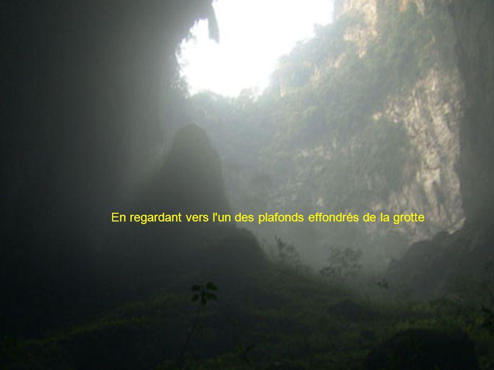 En regardant vers l un des plafonds effondrés de la grotte