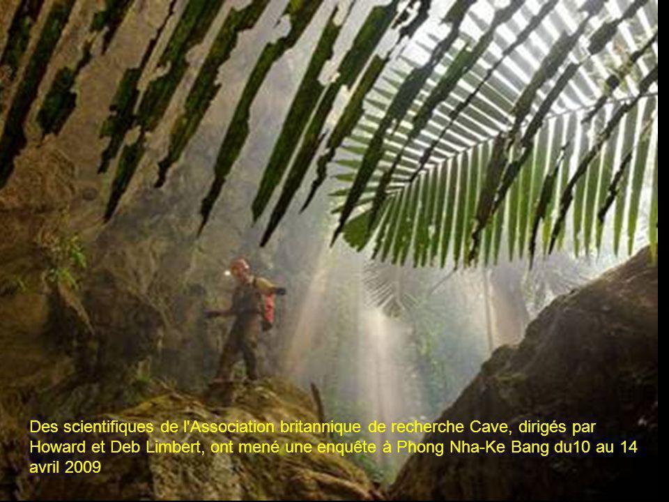 Des scientifiques de l Association britannique de recherche Cave, dirigés par Howard et Deb Limbert, ont mené une enquête à Phong Nha-Ke Bang du10 au 14 avril 2009