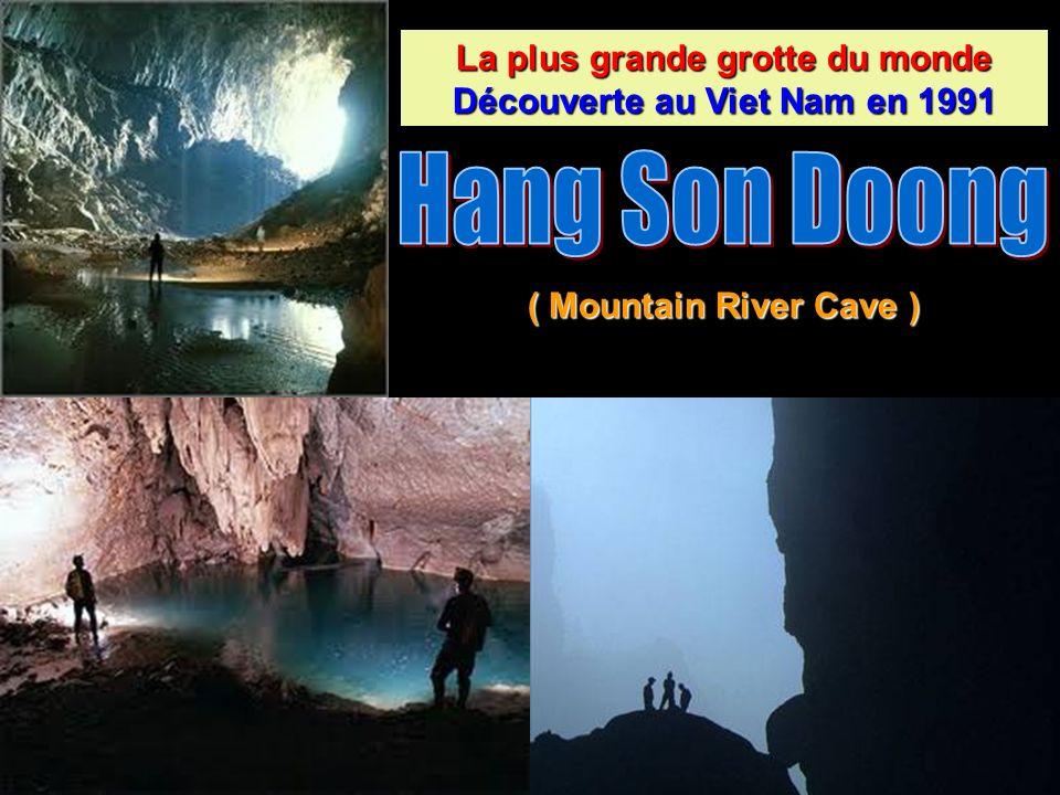La plus grande grotte du monde Découverte au Viet Nam en 1991