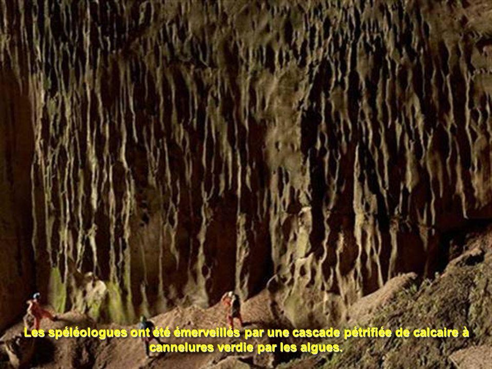 Les spéléologues ont été émerveillés par une cascade pétrifiée de calcaire à cannelures verdie par les algues.