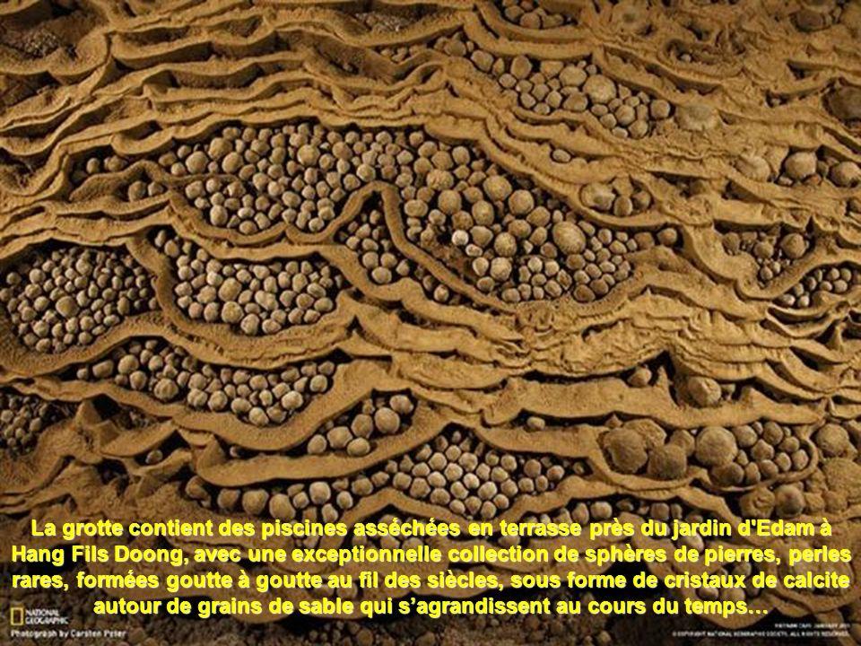 La grotte contient des piscines asséchées en terrasse près du jardin d Edam à Hang Fils Doong, avec une exceptionnelle collection de sphères de pierres, perles rares, formées goutte à goutte au fil des siècles, sous forme de cristaux de calcite autour de grains de sable qui s'agrandissent au cours du temps…