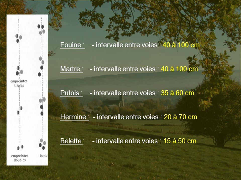 Fouine : - intervalle entre voies : 40 à 100 cm
