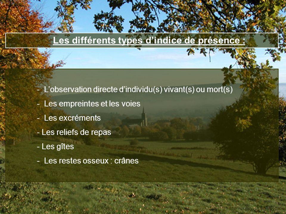 Les différents types d'indice de présence :