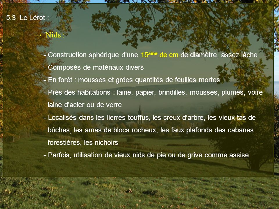 5.3 Le Lérot : → Nids : - Construction sphérique d'une 15aine de cm de diamètre, assez lâche. - Composés de matériaux divers.