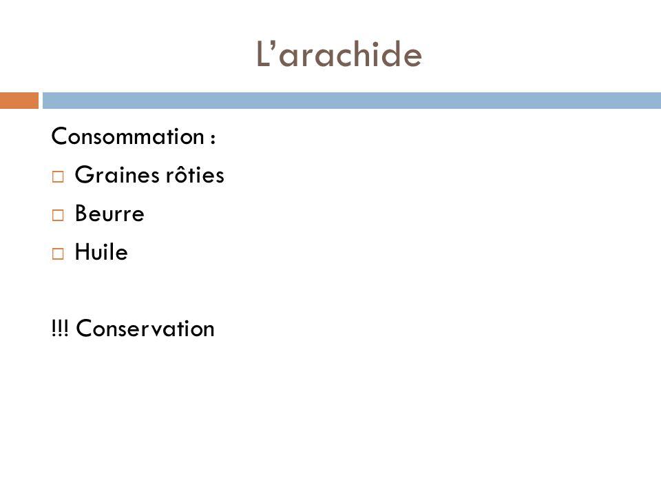 L'arachide Consommation : Graines rôties Beurre Huile !!! Conservation