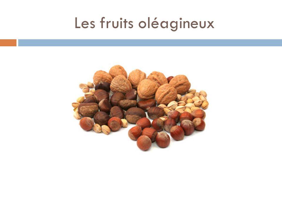 Les fruits oléagineux