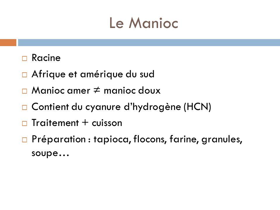 Le Manioc Racine Afrique et amérique du sud Manioc amer ≠ manioc doux