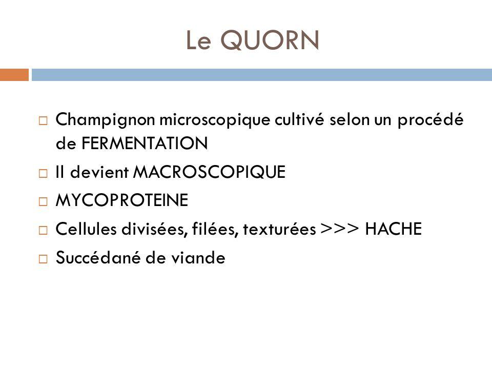 Le QUORN Champignon microscopique cultivé selon un procédé de FERMENTATION. Il devient MACROSCOPIQUE.