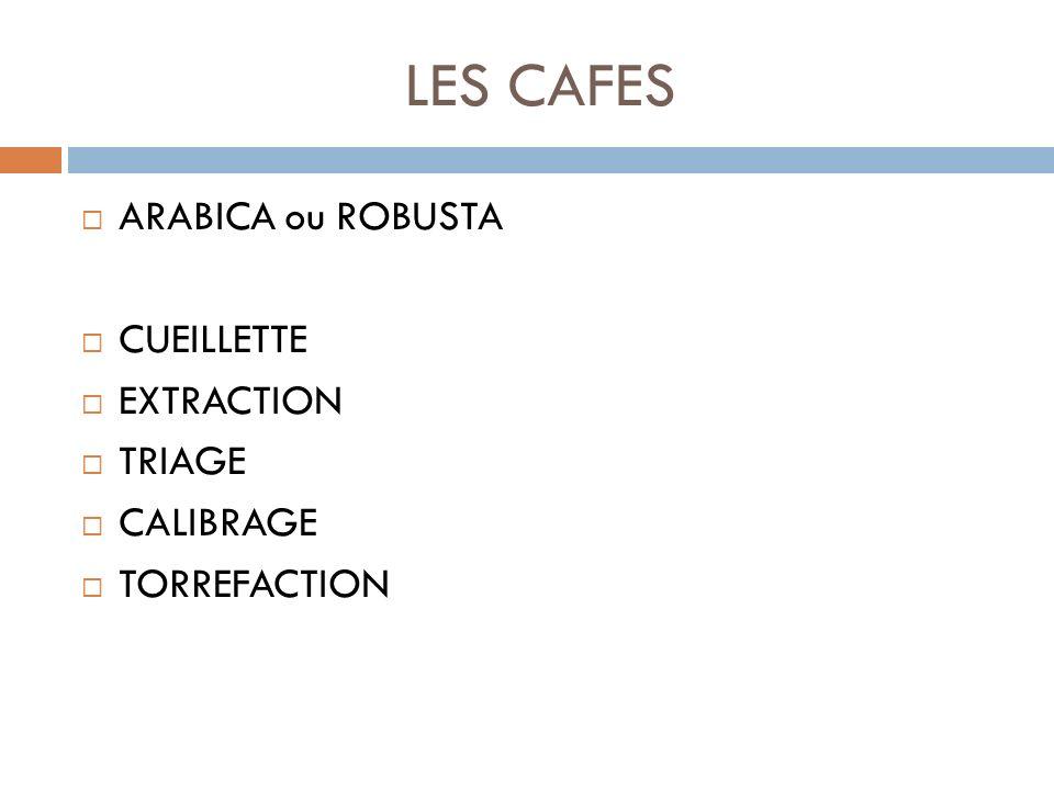 LES CAFES ARABICA ou ROBUSTA CUEILLETTE EXTRACTION TRIAGE CALIBRAGE
