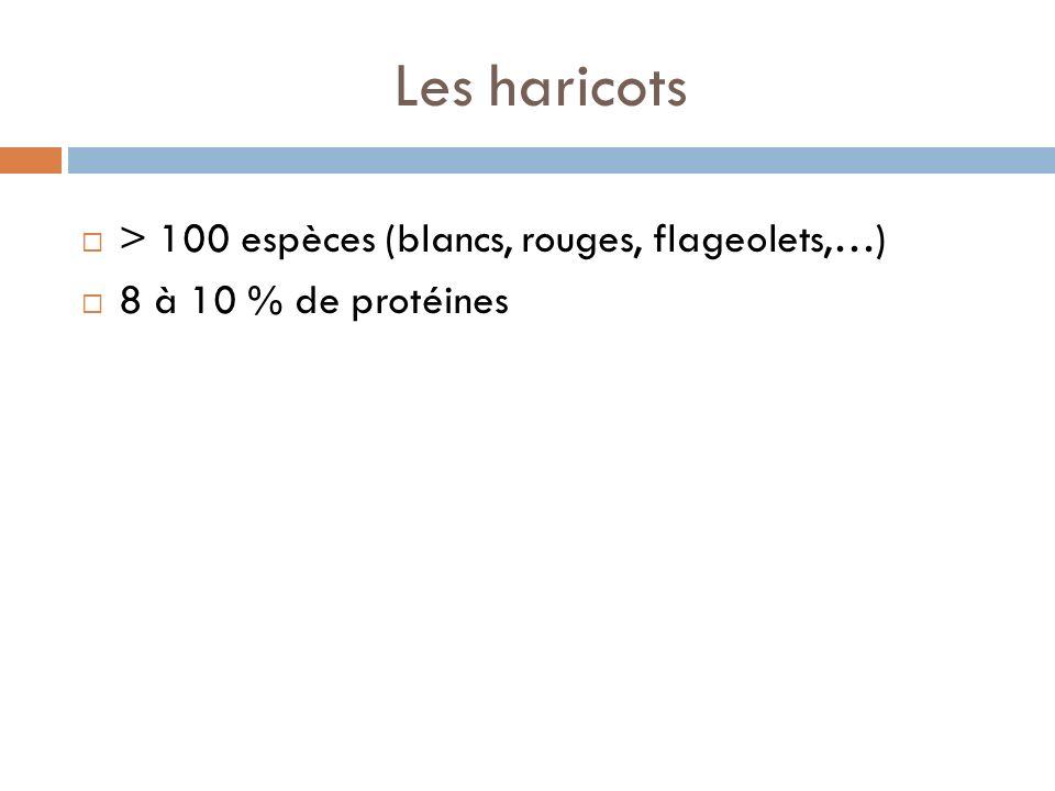 Les haricots > 100 espèces (blancs, rouges, flageolets,…)
