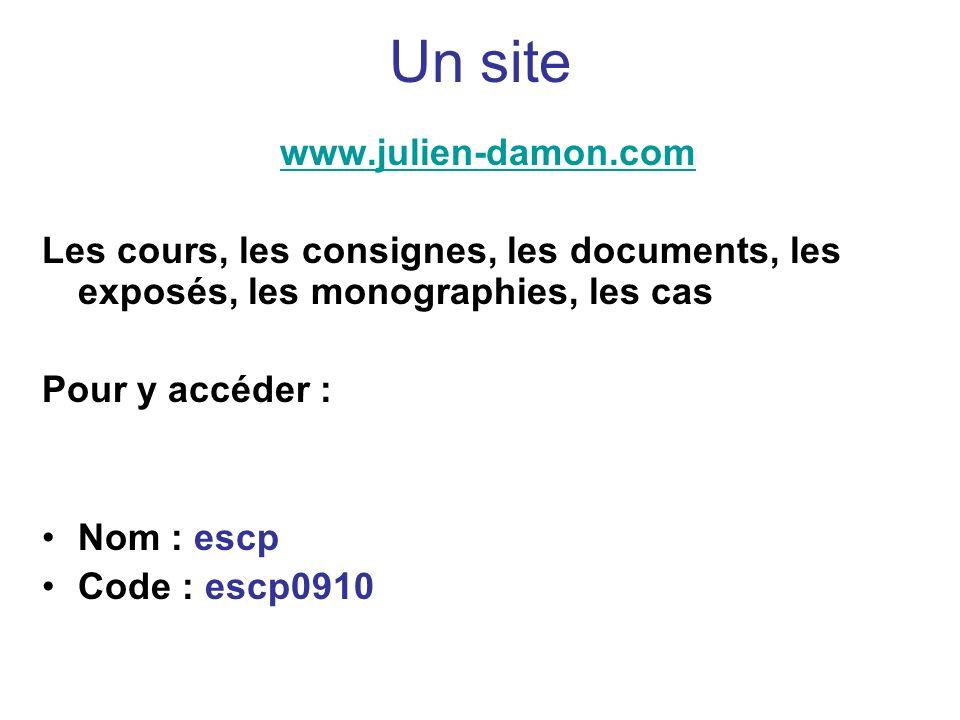 Un site www.julien-damon.com