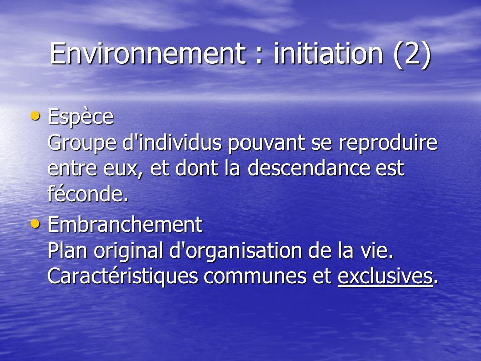 Environnement : initiation (2)