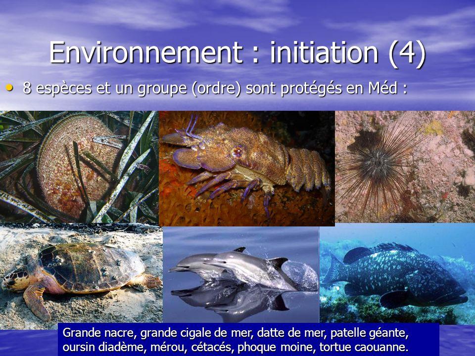 Environnement : initiation (4)
