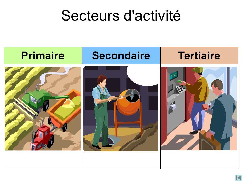 Secteurs d activité Primaire Secondaire Tertiaire
