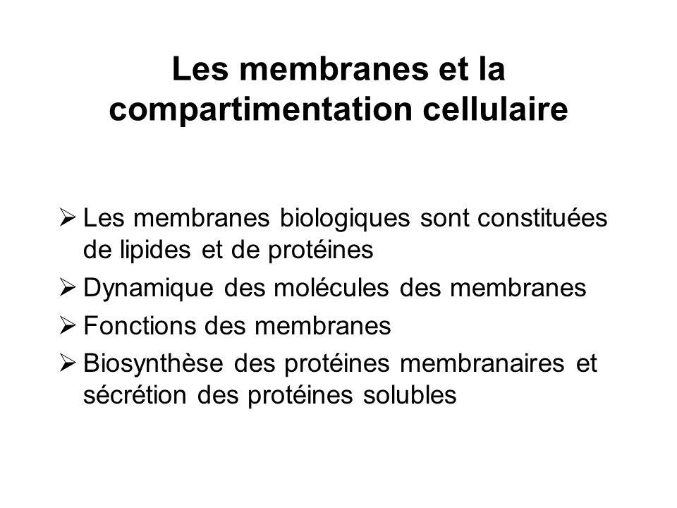 Les membranes et la compartimentation cellulaire