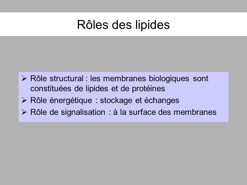 Rôles des lipides Rôle structural : les membranes biologiques sont constituées de lipides et de protéines.