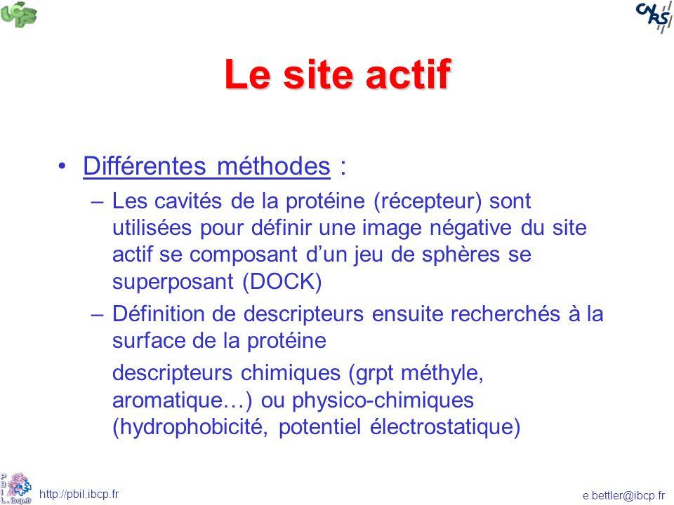 Le site actif Différentes méthodes :