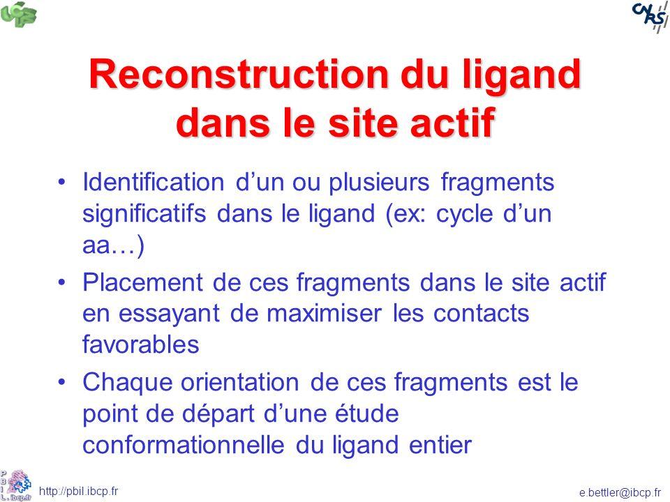 Reconstruction du ligand dans le site actif