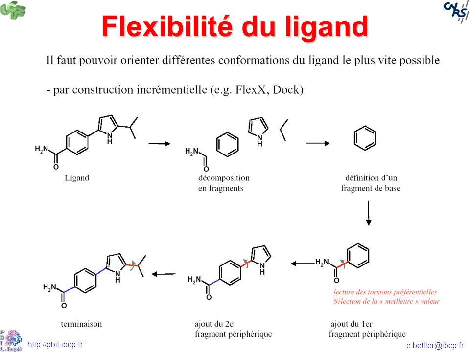 Flexibilité du ligand