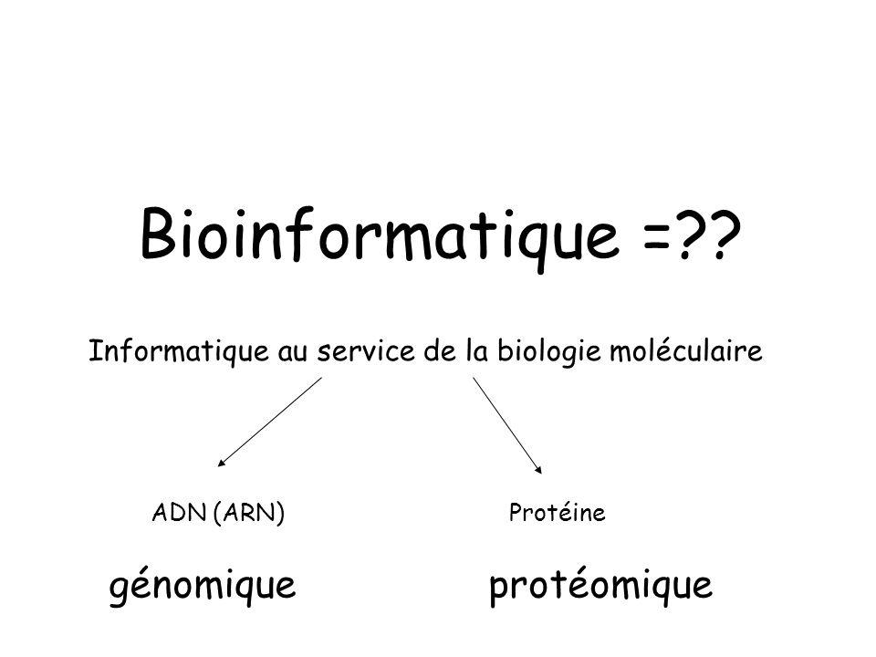 Bioinformatique = génomique protéomique