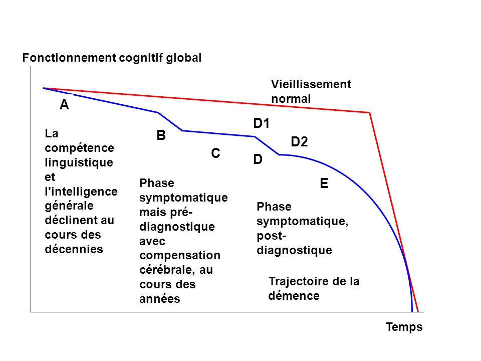 A D1 B D2 C D E Fonctionnement cognitif global Vieillissement normal