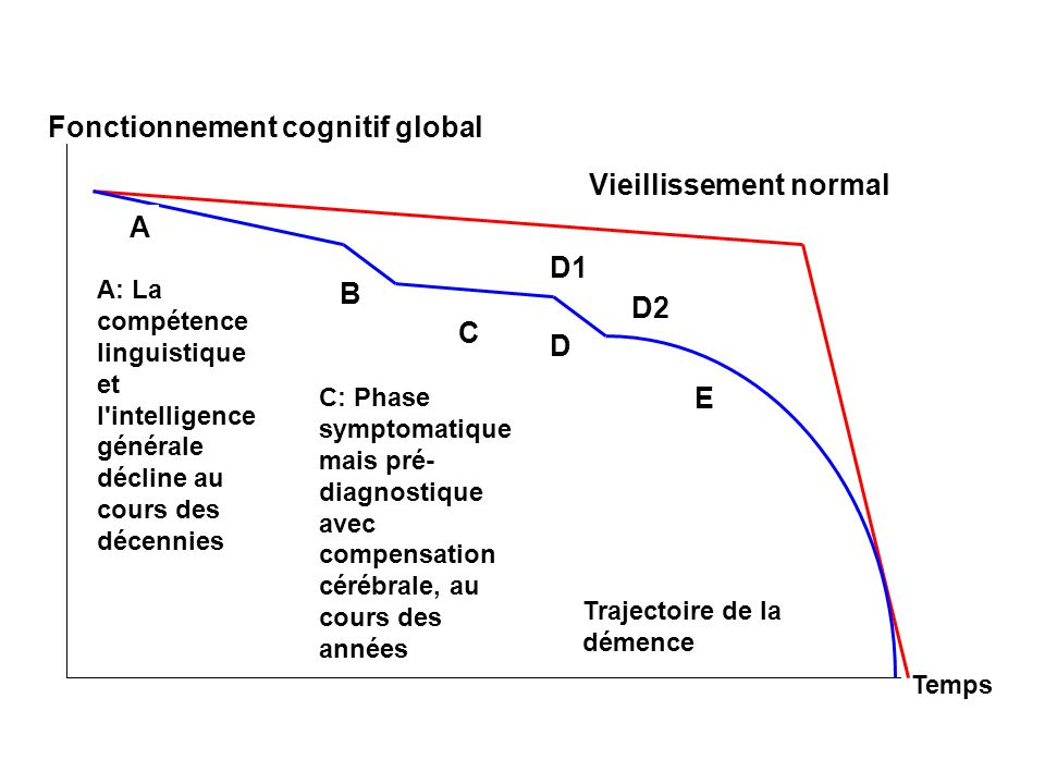 Fonctionnement cognitif global