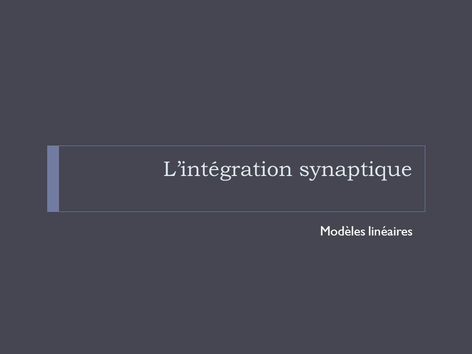 L'intégration synaptique