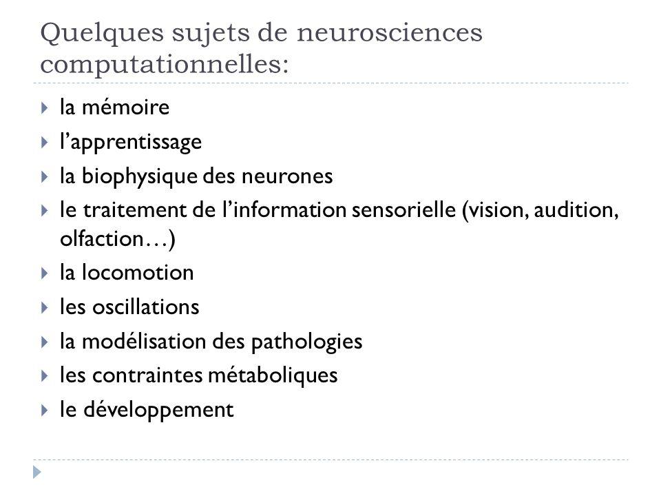Quelques sujets de neurosciences computationnelles: