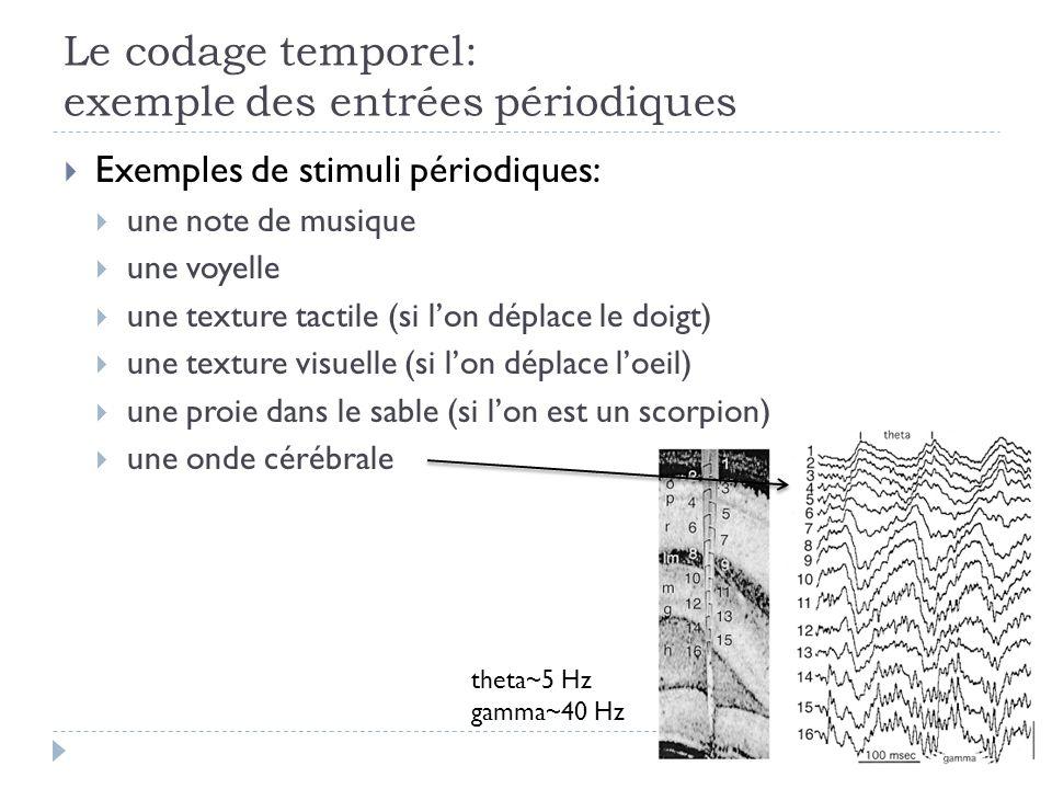 Le codage temporel: exemple des entrées périodiques