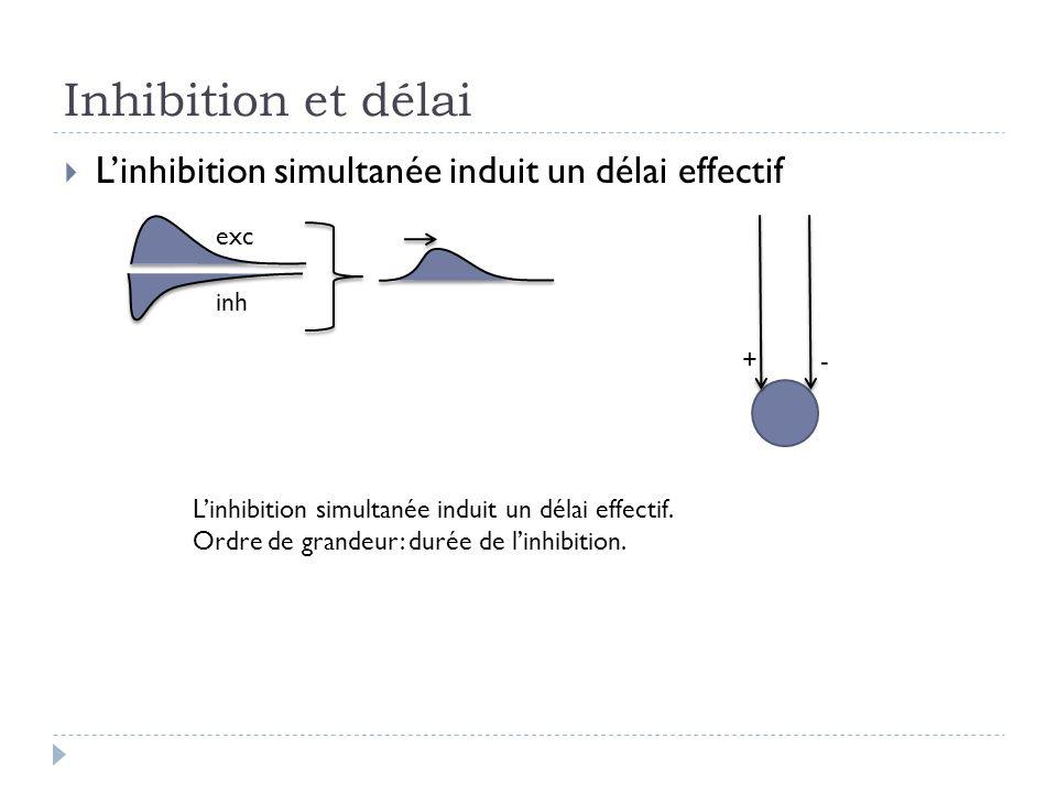 Inhibition et délai L'inhibition simultanée induit un délai effectif