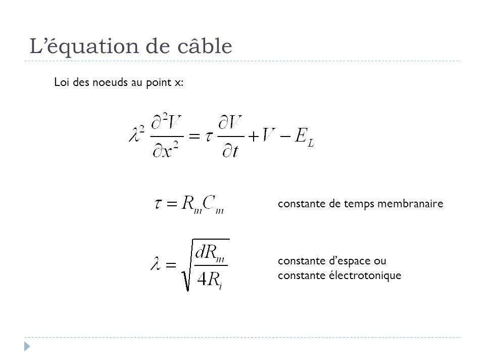 L'équation de câble Loi des noeuds au point x: