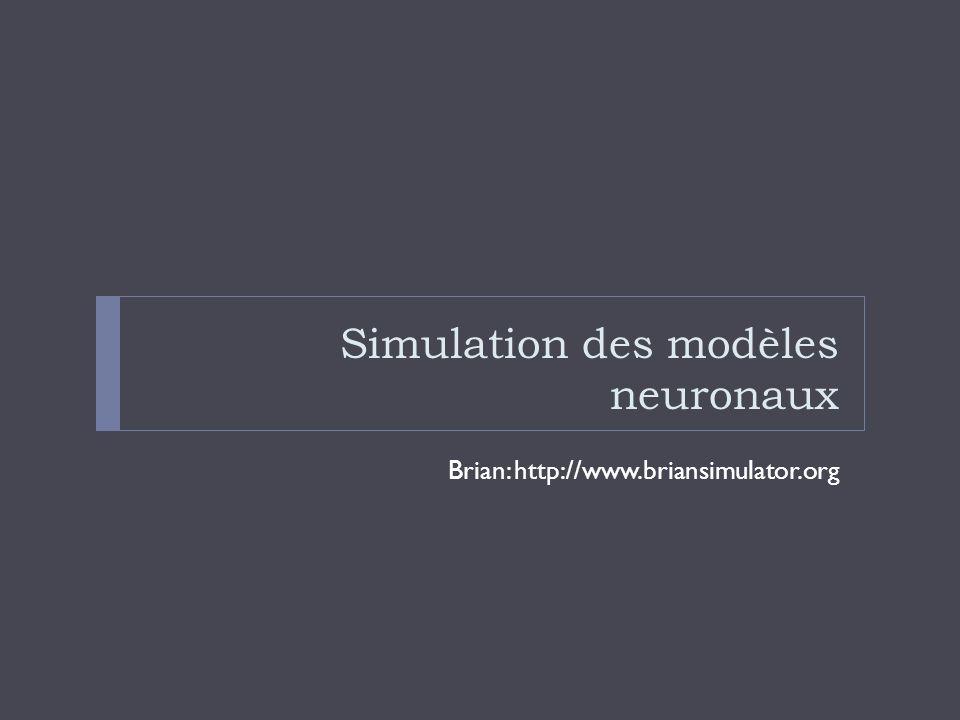 Simulation des modèles neuronaux