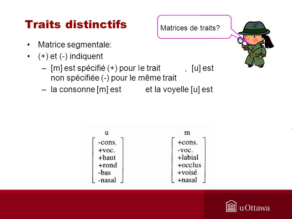 Traits distinctifs Matrice segmentale: (+) et (-) indiquent