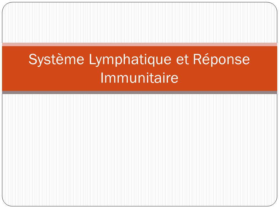 Système Lymphatique et Réponse Immunitaire