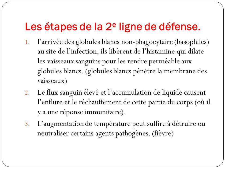 Les étapes de la 2e ligne de défense.