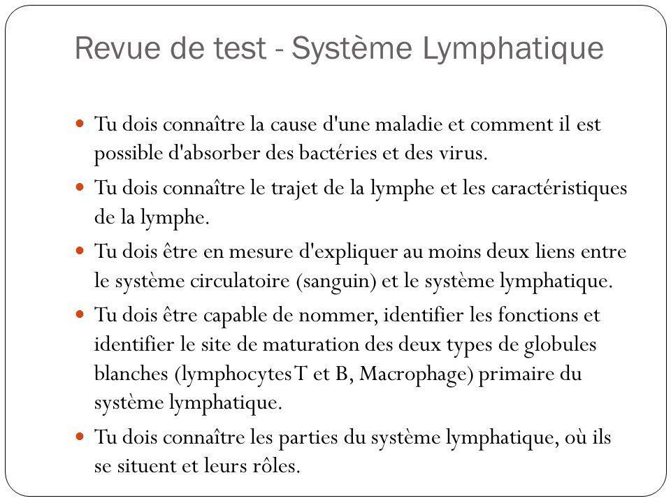 Revue de test - Système Lymphatique