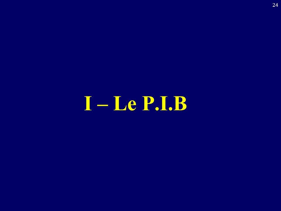 I – Le P.I.B