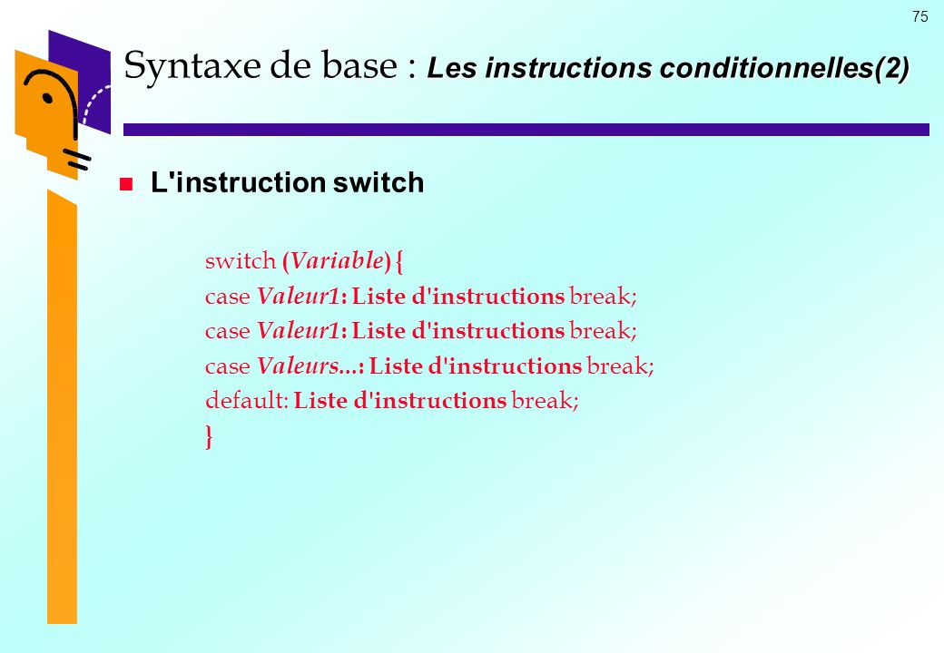 Syntaxe de base : Les instructions conditionnelles(2)