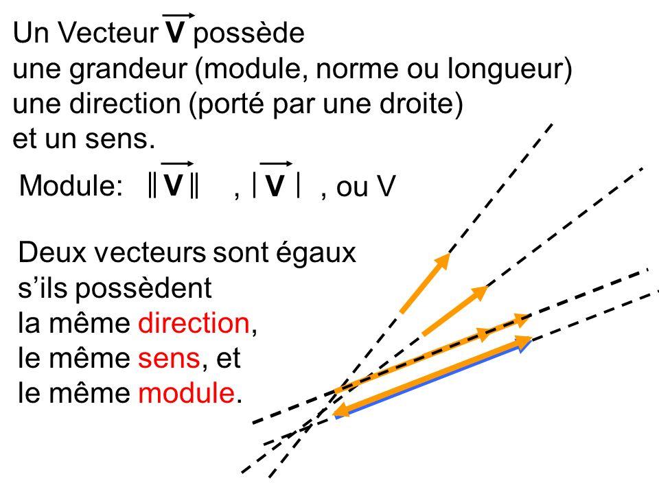 Un Vecteur V possède une grandeur (module, norme ou longueur) une direction (porté par une droite)