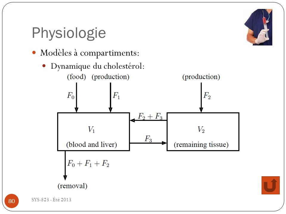 Physiologie Modèles à compartiments: Dynamique du cholestérol: