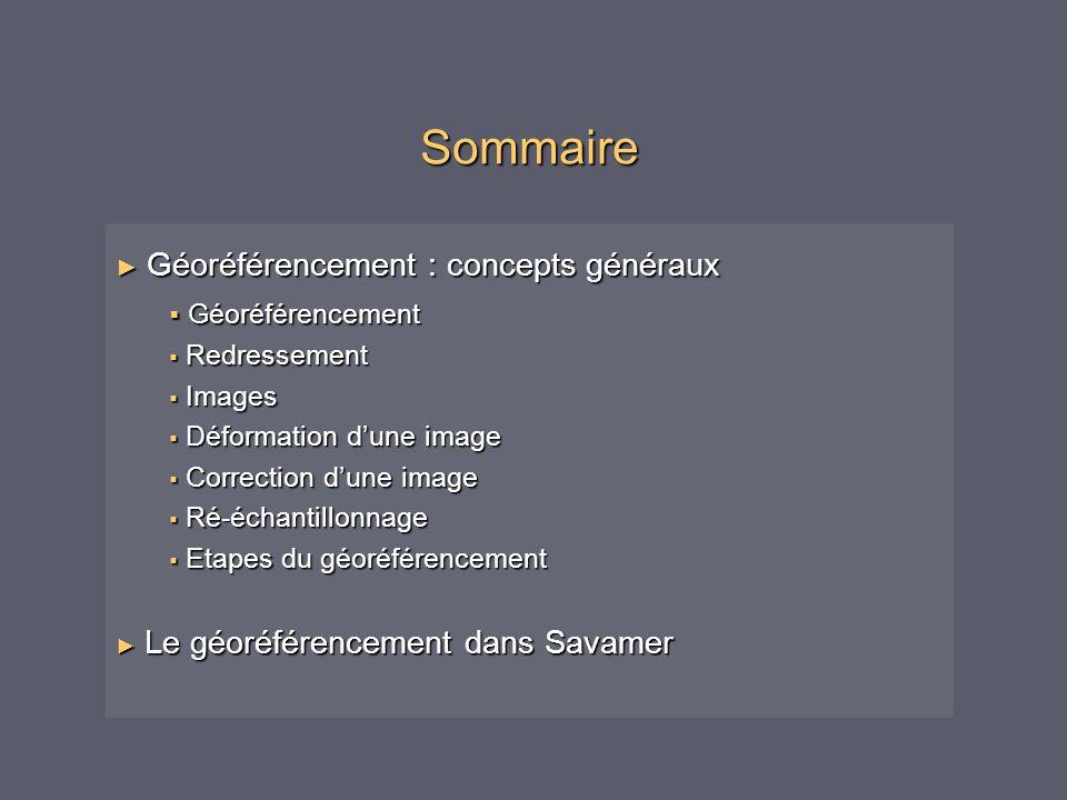 Sommaire Géoréférencement : concepts généraux Géoréférencement