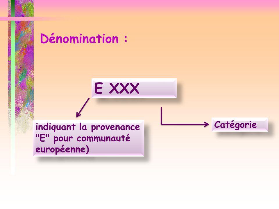 E XXX Dénomination : Catégorie
