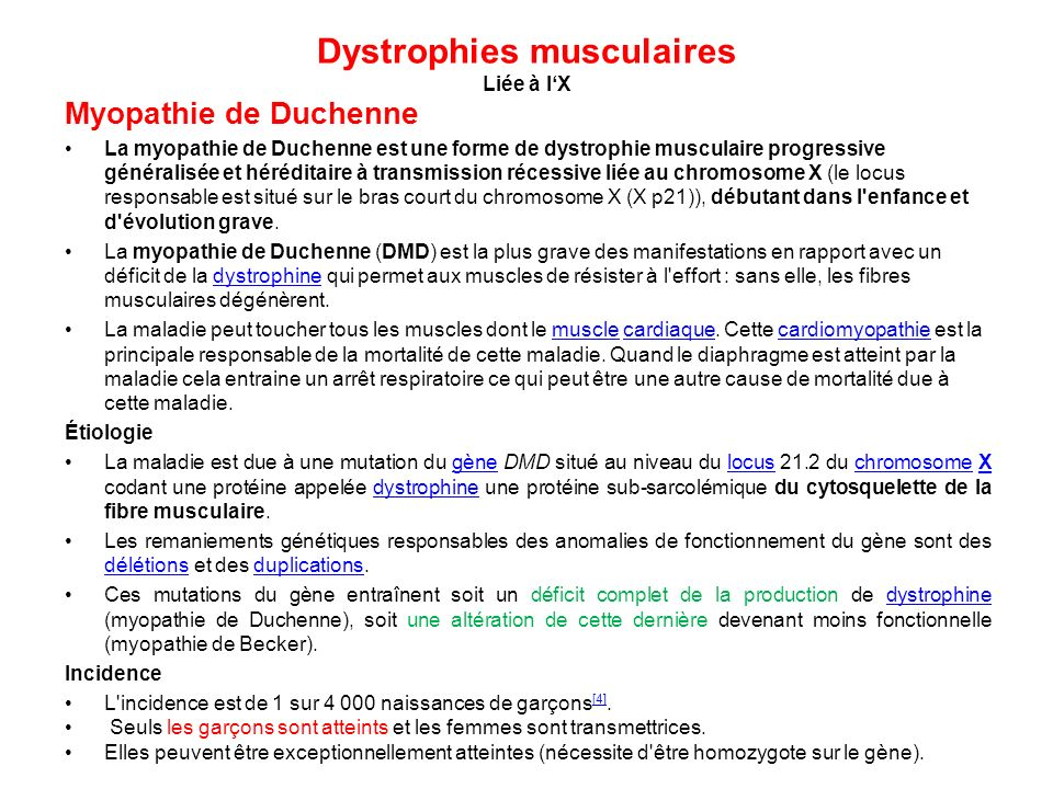 Dystrophies musculaires Liée à l'X