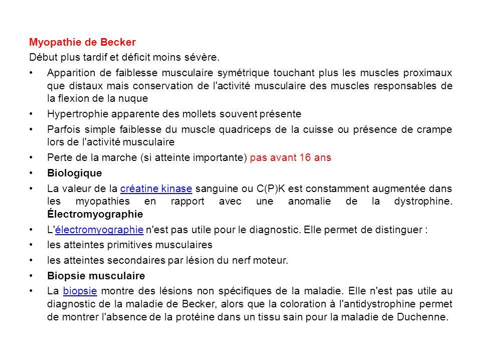 Myopathie de Becker Début plus tardif et déficit moins sévère.
