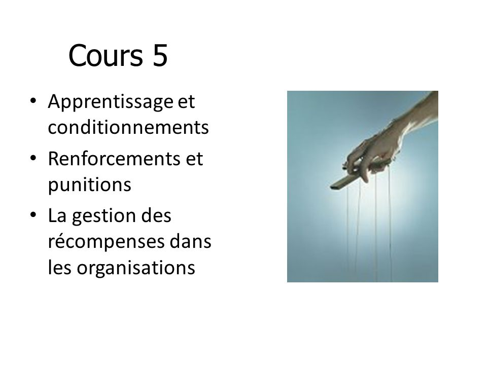 Cours 5 Apprentissage et conditionnements Renforcements et punitions