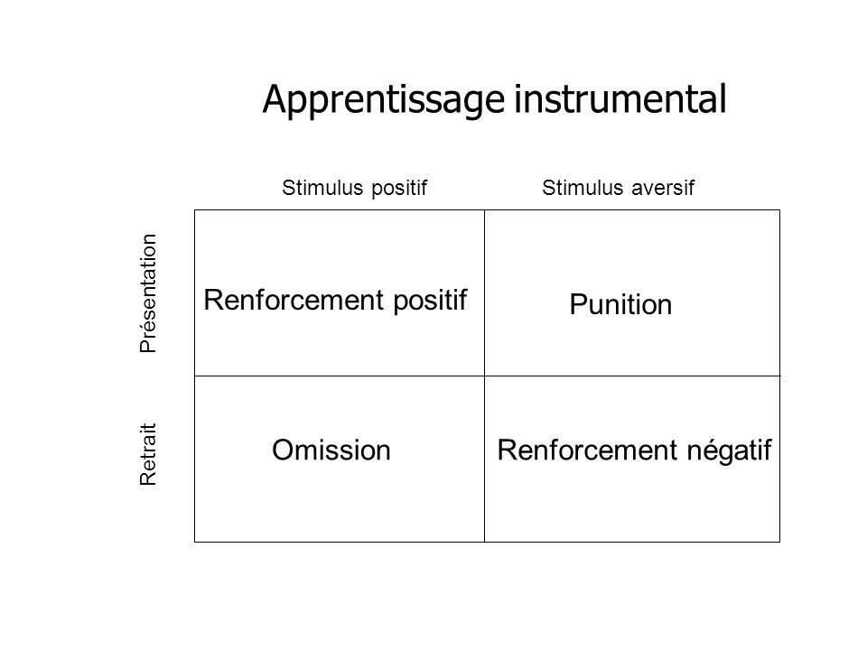 Apprentissage instrumental