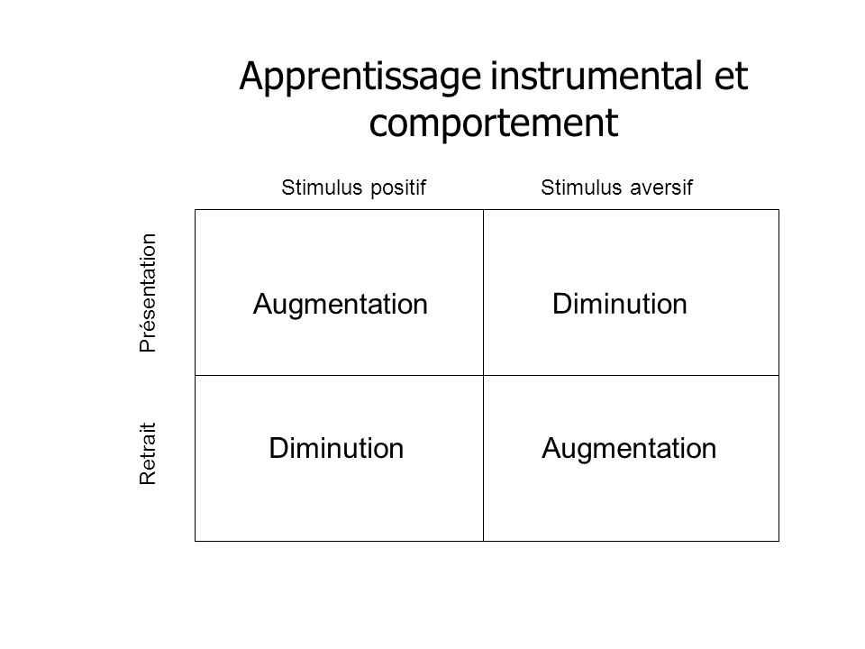 Apprentissage instrumental et comportement