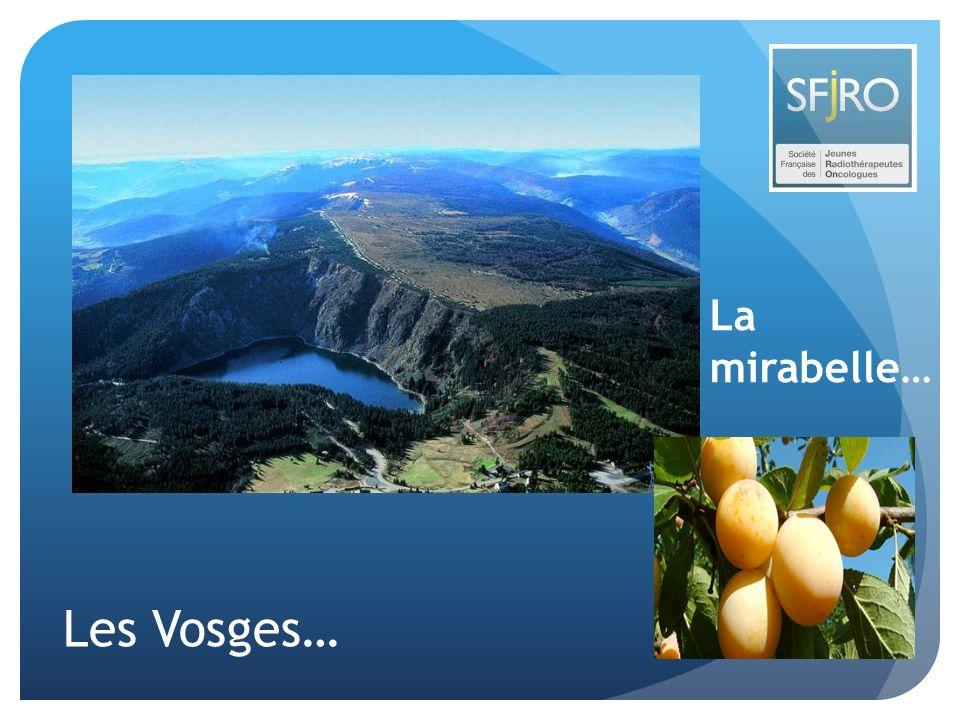 La mirabelle… Les Vosges…